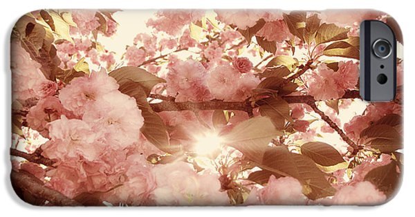Cherry Blossoms Photographs iPhone Cases - Cherry Blossom Sky iPhone Case by Amy Tyler