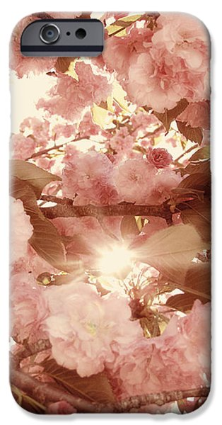 Cherry Blossom Sky iPhone Case by Amy Tyler