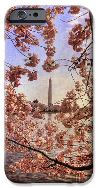 Cherry Blossoms and the Washington Monument iPhone Case by Lois Bryan