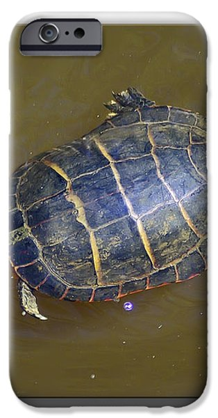 Chester River Turtle iPhone Case by Brian Wallace