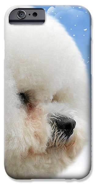 China's latest craze - Dyeing pets iPhone Case by Christine Till