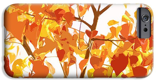 Recently Sold -  - Botanic Illustration iPhone Cases - Chinese Tallow in Fall iPhone Case by Phill Petrovic
