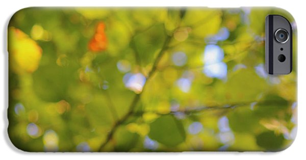 Impressionist Photography iPhone Cases - Chlorophyll Daydream iPhone Case by Andrew Pacheco