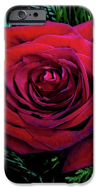 Christmas Rose iPhone Case by Mariola Bitner