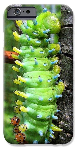 Creepy iPhone Cases - Chubby Caterpillar iPhone Case by Lori Pessin Lafargue
