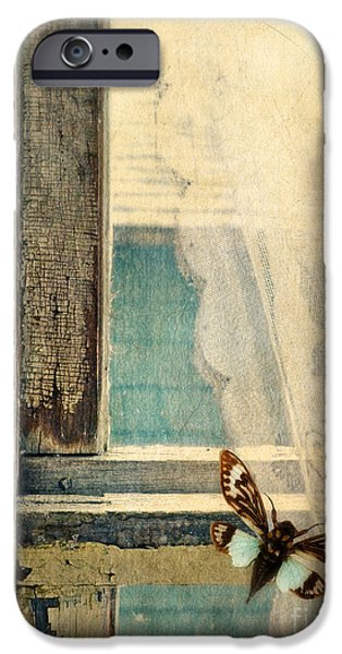 Antiques iPhone Cases - Cicada on Window iPhone Case by Jill Battaglia
