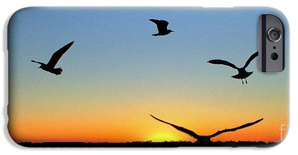 Seagull iPhone Cases - Circle Meeting at Sunrise iPhone Case by Benanne Stiens