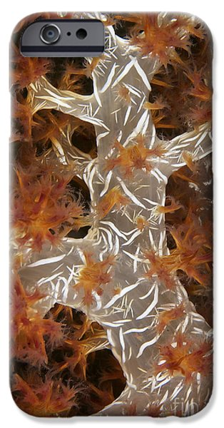 Close-up Of Soft Coral Revealing iPhone Case by Terry Moore