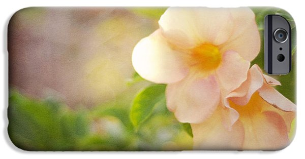 Flower Design Photographs iPhone Cases - Closeness iPhone Case by Jenny Rainbow