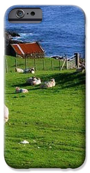Co Cork, Beara Peninsula iPhone Case by The Irish Image Collection