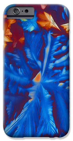 Coenzyme iPhone Cases - Co-enzyme Nad (nicotinamide) Crystals iPhone Case by Pasieka
