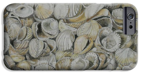 Best Sellers -  - Shed Pastels iPhone Cases - Cockle Shells iPhone Case by Teresa Smith