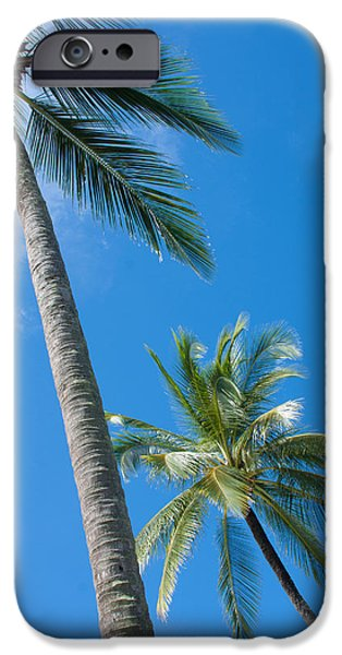 coconuts  iPhone Case by ATIKETTA SANGASAENG