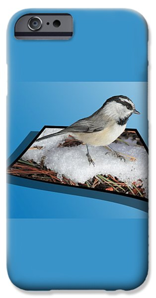 Cold Feet iPhone Case by Shane Bechler