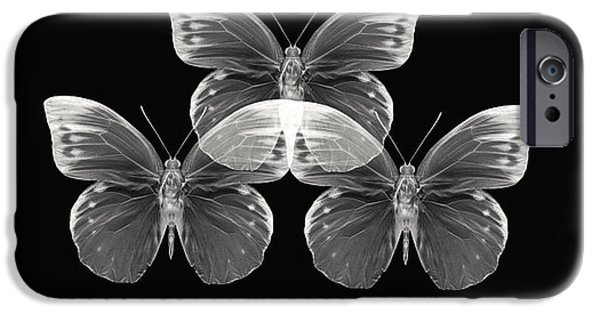 Black And White Photographs iPhone Cases - Collection2 iPhone Case by Lourry Legarde
