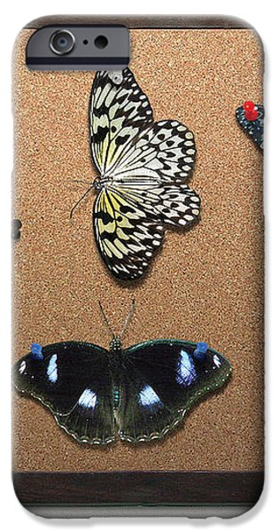 Collector - Lepidopterist - My Butterfly Collection iPhone Case by Mike Savad