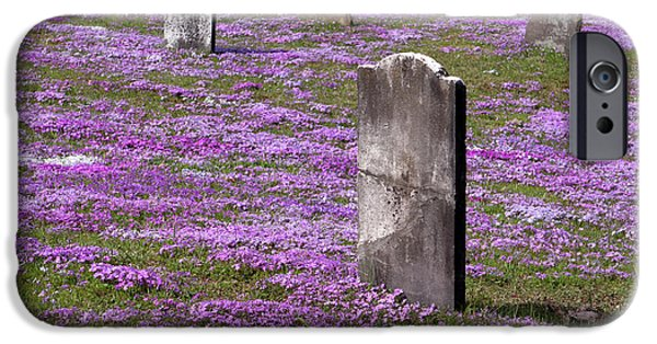 Final Resting Place Photographs iPhone Cases - Colonial Tombstones Amidst Graveyard Phlox iPhone Case by John Stephens