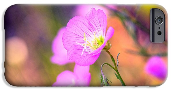 Florals iPhone Cases - Color Pop iPhone Case by Joel Olives