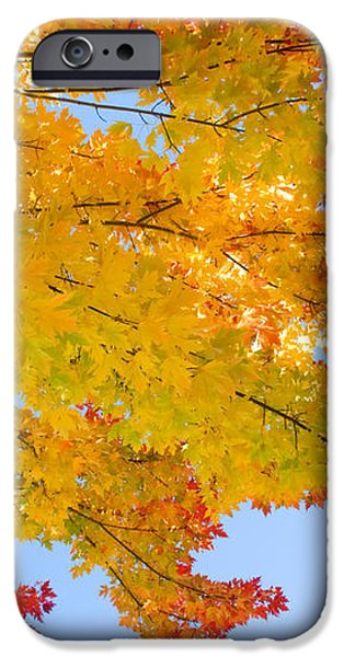 Colorful Autumn Reaching Out iPhone Case by James BO  Insogna