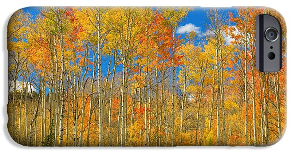 Striking Photography iPhone Cases - Colorful Colorado Autumn Landscape iPhone Case by James BO  Insogna