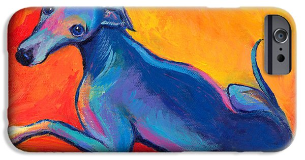Pets Art iPhone Cases - Colorful Greyhound Whippet dog painting iPhone Case by Svetlana Novikova