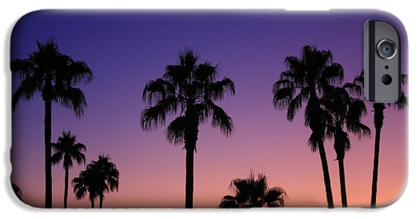 Palm Tree Greeting Cards iPhone Cases - Colorful Tropical Palm Tree Sunset iPhone Case by James BO  Insogna