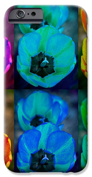 Colorful Tulip Collage iPhone Case by James BO  Insogna