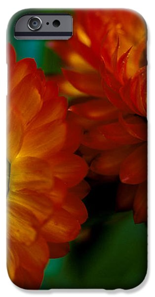 Colors of Fall iPhone Case by Kathy Yates