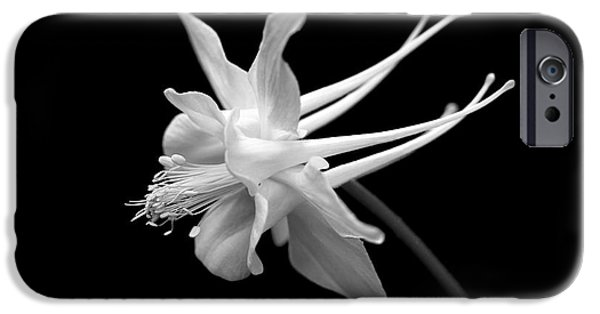 Columbine iPhone Cases - Columbine Flower Portrait Black and White iPhone Case by Jennie Marie Schell