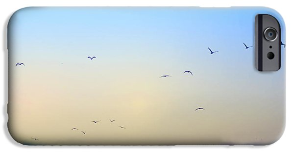 Flying Seagull iPhone Cases - Come Fly With Me iPhone Case by Bill Cannon