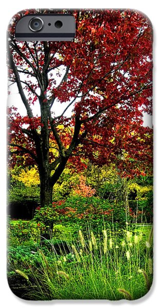 Photos With Red iPhone Cases - Come Walk with Me ... iPhone Case by Juergen Weiss