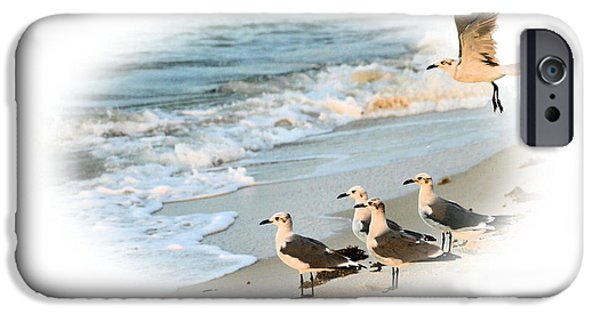 Seagull iPhone Cases - Coming In for a Landing iPhone Case by Kristin Elmquist