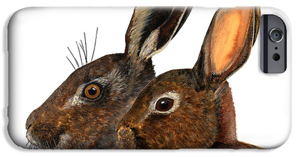 Nature Study Drawings iPhone Cases - Comparison hare rabbit ears - Oryctolagus cuniculus - Genus lepus - Vergleich Hase Kaninchen Ohren iPhone Case by Urft Valley Art