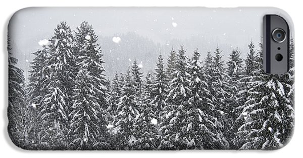 Winter Storm iPhone Cases - Coniferous Forest In Winter, Alps iPhone Case by Konrad Wothe