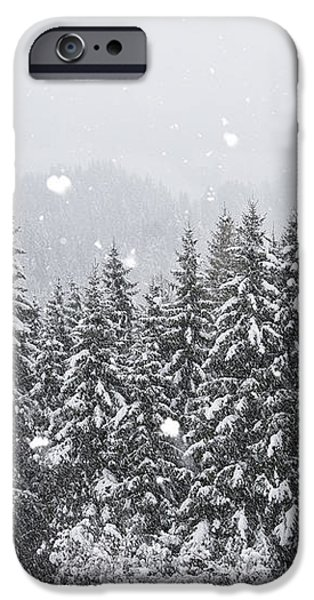 Coniferous Forest In Winter, Alps iPhone Case by Konrad Wothe