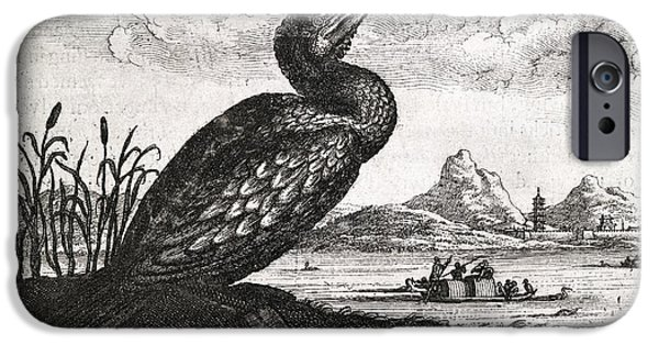 Boat iPhone Cases - Cormorant, 17th Century Artwork iPhone Case by Middle Temple Library