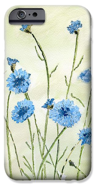 Wild Life Drawings iPhone Cases - Cornflowers iPhone Case by Eva Ason