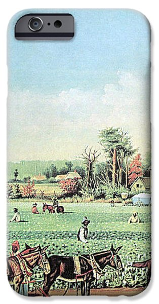 Cotton Plantation On The Mississippi iPhone Case by Photo Researchers