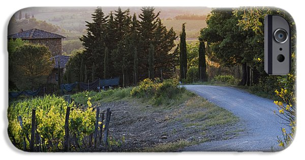 Chianti Landscape iPhone Cases - Country Road at Sunset iPhone Case by Jeremy Woodhouse