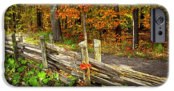 Natural Beauty iPhone Cases - Country road in autumn forest iPhone Case by Elena Elisseeva