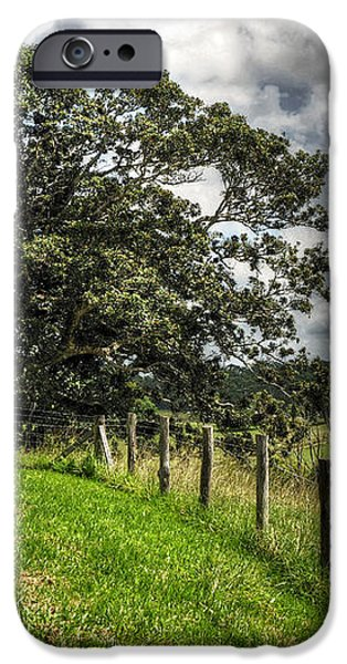 Countryside with old Fig Tree iPhone Case by Kaye Menner