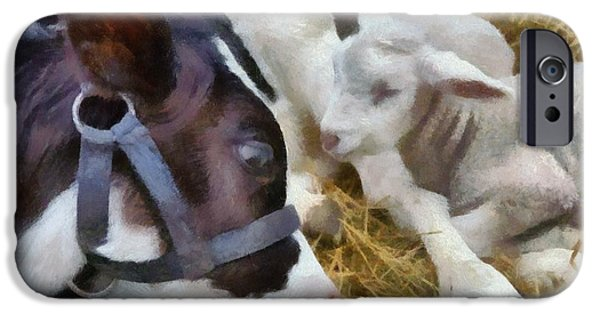 Playful Digital Art iPhone Cases - Cow and Lambs iPhone Case by Michelle Calkins
