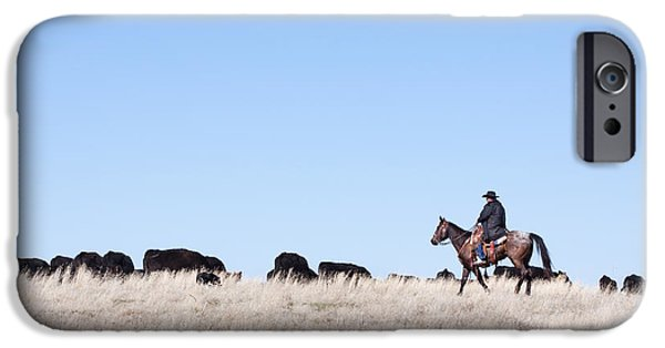 Working Cowboy Photographs iPhone Cases - Cowboy and Cattle iPhone Case by Cindy Singleton