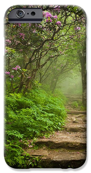 Recently Sold -  - Fog Mist iPhone Cases - Craggy Steps iPhone Case by Joye Ardyn Durham