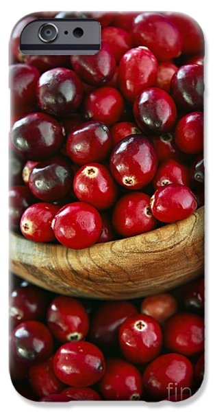 Cranberries in a bowl iPhone Case by Elena Elisseeva