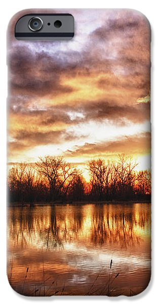 Crane Hollow Sunrise Boulder County Colorado HDR iPhone Case by James BO  Insogna