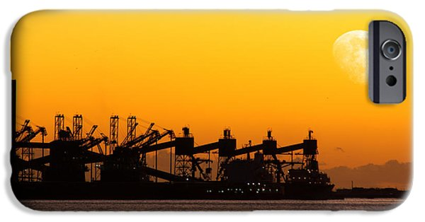 Atmosphere iPhone Cases - Cranes at Sunset iPhone Case by Carlos Caetano