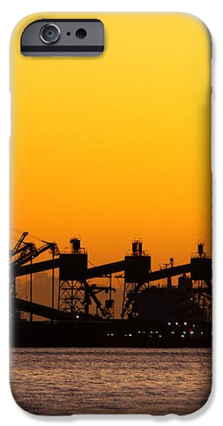 Cranes at Sunset iPhone Case by Carlos Caetano