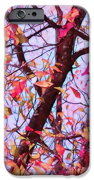 Crisp Autumn Day iPhone Case by Judi Bagwell