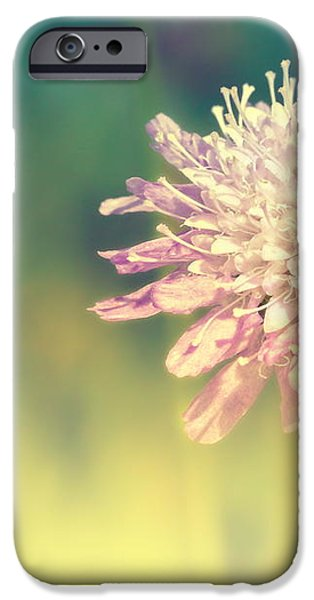 Cross Color iPhone Case by Angela Doelling AD DESIGN Photo and PhotoArt